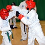 Sparring Practice