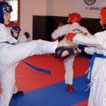 Coloured Belt Grading - August 2014