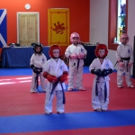 Coloured Belt Grading - March 2014